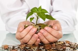 Model 1 - Seed Funding
